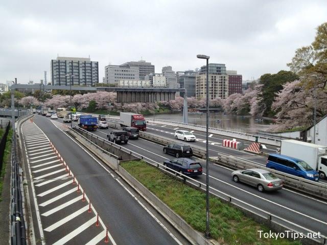 Metropolitan Expressway is crossing Chidorigafuchi. Many cherry blossoms full bloomed.
