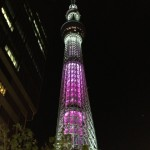 舞 (Mai) means a dance. The tower is pink overall.