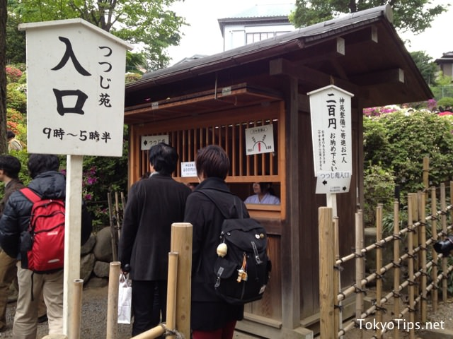 Nezu Shrine charges 200 yen to enter to its azalea garden. Visitors pay its fee here. Admission to Nezu Shrine is free.