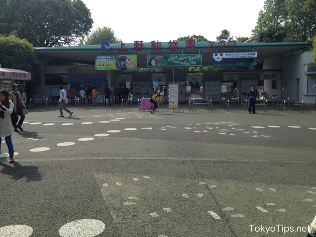 Next door is Ueno Zoo.